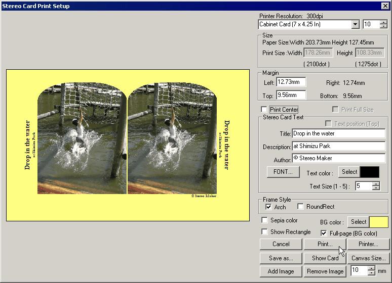 Print Stereo Card